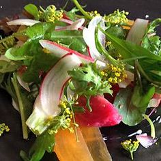 Greens, Persimmons, Baby Beets, and Radishes with Toasted Coriander Vinaigrette by Daniel Corey,  Luce Restaurant http://www.cuesa.org/recipe/greens-persimmons-baby-beets-and-radishes-toasted-coriander-vinaigrette