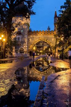 Budapest. Hungary. Foto: Kardos Ildikó Beautiful Places To Visit, Wonderful Places, Places To See, Places Around The World, Around The Worlds, Capital Of Hungary, Hungary Travel, Beautiful Castles, Central Europe