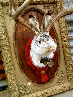 Meet Professor Tubbs He's A Vintage Taxidermy Jackalope That Studies Weather Patterns.