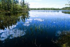 Helvetinjärvi National Park, Finland http://www.economycarhire.com/blog/2013/09/26/top-5-things-finland/