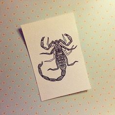 #скорпион #scorpion #мандала #графика #орнамент #узор #graphic #art #edding1880…