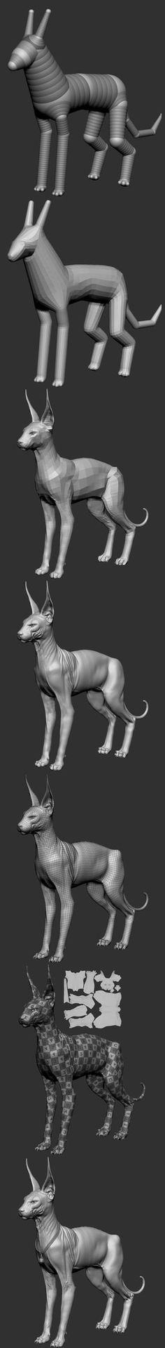 Great 3D model process shown here. It's helpful to look at this and see the transition from basic shapes into a highly detailed mesh.