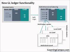 SAP Financial Accounting (FI) New General Ledger Document splitting