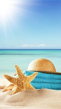 Pink Beach and Shells Strand Wallpaper, Ocean Wallpaper, Summer Wallpaper, Summer Breeze, Summer Vibes, Jolie Photo, Beach Photography, Beautiful Beaches, Cute Wallpapers