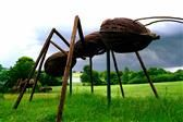 Backpack Adventure- Pick up a backpack at the Visitor Services Center.  Big Bugs - outdoor art installation featuring 8 enormous insect sculptures created from fallen or found wood, cut saplings, twigs, raw branches, twine, bark and other natural materials Reasonabley priced cafe, or can bring picnic lunch Sculpture Trail.