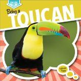 Can you Imagine? Being a Toucan