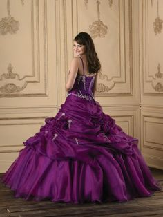 2012 Style Ball Gown Spaghetti Straps  Embroidery  Sleeveless Floor-length Organza Prom Dresses / Evening Dresses