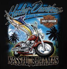 Harley Davidson Tattoos, Harley Davidson Pictures, Harley Davidson Art, Harley Davidson T Shirts, Harley Davidson Motorcycles, Harley Davidson Engines, Harley Davidson Dealership, Harley Dealer, Old Fashioned Cars