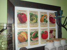 Displaying vintage seed packets.