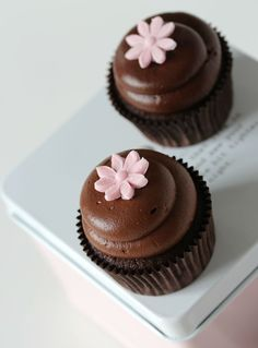 Dear Donna, I have made some Triple Chocolate Cupcakes for you, I hope you like Chocolate :) enjoy. xoxo 16.6.16  Allana