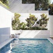 Landscapers, Landscape Design Company | Harrison's Landscaping, Sydney NSW | Paddington
