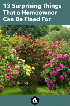 13 Surprising Things That a Homeowner Can Be Fined For