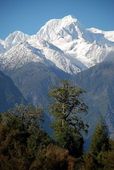 Mount Tasman, Fox Glacier, West Coast, New Zealand. Photo:  geoftheref, via Flickr