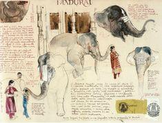 Stefano Faravelli - Sketchbook