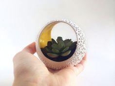 Succulent planter  Ceramic Plant Pot  Ceramics and by PotteryLodge, $32.00