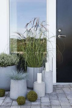 10 Large Planters For The Garden – Award Winning Contemporary Concrete Planters and Sculpture by Adam Christopher Grass Flower, Flower Pots, Decoration Plante, Large Planters, Concrete Planters, Ornamental Grasses, Garden Pots, Terrace Garden, Vegetable Garden