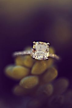 Perfect ring. Simple and breathtakingly elegant. Special, not flashy