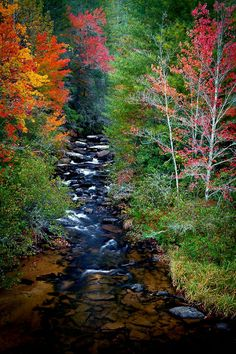 Nature Iphone Wallpaper, Autumn Scenes, North Carolina Homes, Little River, Cades Cove, Blue Ridge Mountains, Mountain Landscape, East Coast, Beautiful World