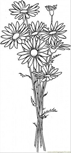 Daisy Flower Coloring Pages | free printable coloring page Daisy 6 (Natural World > Flowers)