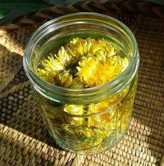 ULEIUL DE PĂPĂDIE INGREDIENTE: -500 g de flori de păpădie; -un litru de ulei calitativ de floarea-soarelui (presat la rece). MOD DE PREPARARE: 1.Culegeți florile de păpădie pe timp uscat și însorit. Puneți-le într-un borcan de 1.5 litri. Nu trebuie să le spălați. 2.Acoperiți-le în totalitate cu ulei. Acoperiți borcanul cu tifon, fixându-l bine de gâtul lui. 3.Puneți borcanul într-un loc însorit și lăsați-i conținutul să se odihnească pe parcursul a 3 săptămâni. 4.Cum numai florile vor deveni… Healthy Tips, Pickles, Cucumber, Herbalism, Dandelion, Remedies, Health Fitness, Homemade, Recipes