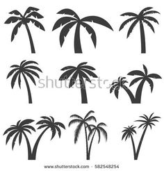 Set of palm tree icons isolated on white background. Design elements for logo, label, emblem, sign, menu. Vector illustration.