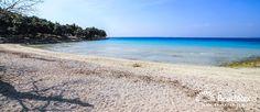 Beach Slanica - Murter - Island Murter - Dalmatia - Šibenik - Croatia