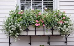 White, pink and blue is a favorite combination that is always attractive. Here Proven Winners plants including Snow Princess Alyssum, Diamond Frost Euphorbia, Sky Blue Lobelia, and Bubblegum Pink Supertunias are used with pink geraniums.