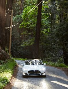 Tesla and Airbnb team up to offer electric vehicle charging at select locations.