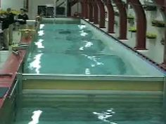 View The Physics Classroom's standing wave demonstration performed ...
