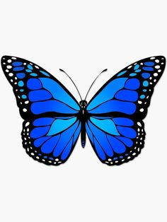 Butterfly Discover Blue butterfly Sticker by Gaspar Avila Blue Butterfly Wallpaper, Blue Butterfly Tattoo, Butterfly Pillow, Butterfly Canvas, Cute Butterfly, Butterfly Design, Butterfly Stencil, Butterfly Drawing Outline, How To Draw Butterfly