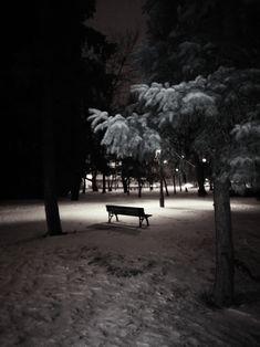 Snowy evening in Székesfehérvár