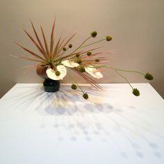 今日のお稽古 Today's lesson Sogetsu Ikebana #Flower #Sogetsu #Ikebana #art