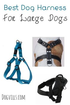 Choosing the best dog harness for large dogs is key to keeping your big breed under control on a walk or during a training session.