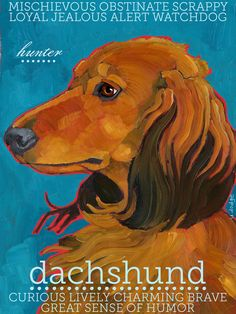 Dachshund No 4  Red Long Hair Art Print by ursuladodge