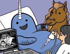 How unicorns are born..