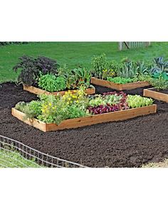 I want to do a small raised vegetable garden this year...