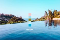 Different hues, from different pools.