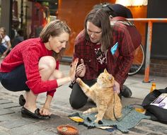 cat Bob and James Bowen - Pesquisa Google