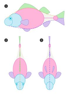Fish look very simple to draw, but, as with everything, we need to learn something about their anatomy to picture them properly. In this tutorial I'll show you features of a typical fish, as well. Fish Drawings, Animal Drawings, Drawn Fish, Draw Animals, Animal Anatomy, Sharks, Under The Sea, Kids Rugs, Concept Art
