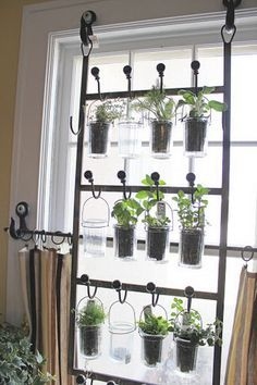 indoor garden from hooks and rods, Cool DIY Indoor Herb Garden Ideas, http://hative.com/cool-diy-indoor-herb-garden-ideas/,