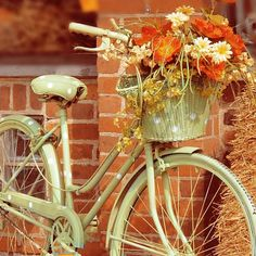 Shabby Chic Photography  Autumn Bicycle by alicebgardens on Etsy, $25.00