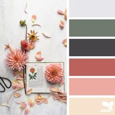 SnapWidget | today's inspiration image for { color cut } is by @c_colli ... thank you Cristina for another gorgeous + inspiring #SeedsColor image share!