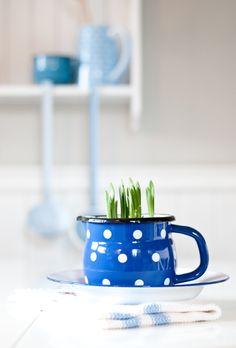 Enamel, blue, Minty House, spring