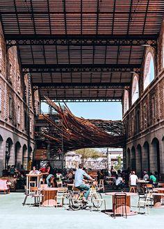 Darwin, nouveau lieu Bordeaux