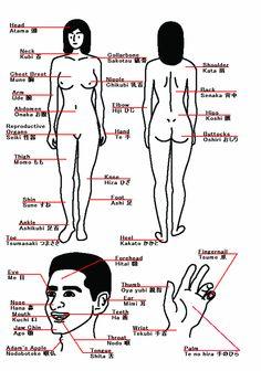 body piercings names -