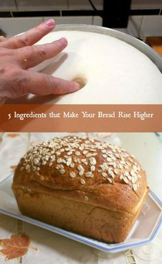 Having trouble getting bread to rise? Here are 5 things that will help your bread rise higher. From restlesschipotle.com