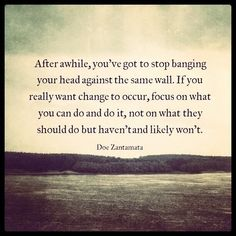 """""""After awhile, you've got to stop banging your head against the same wall. If you really want change to occur, focus on what you can do & do it, not on what you should do but haven't & likely won't.""""-Doe Zantamata"""
