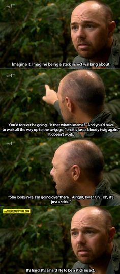 Imagine being a stick insect… Karl Pilkington's brain never ceases to amaze me