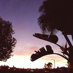 I love LA sunsets! | One Turn Kill