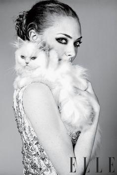 Amanda Seyfried and a feline friend